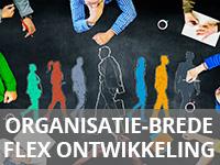 organisatie-brede-flexontwikkeling-klein-grijs